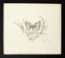 DRAWING OF A BUTTERFLY.